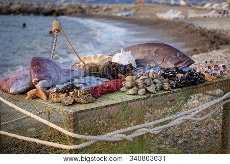 On The Table Are Seafood: Big Fish, Smaller Fish, Lobsters, Mussels, Oysters, Shrimp. A Skewer Protr