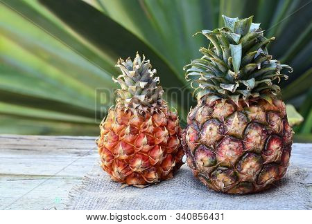Fresh Ripe Pineapple Fruit In Tropical Garden On Old Wooden Table.ananas Comosus.healthy Eating, Die