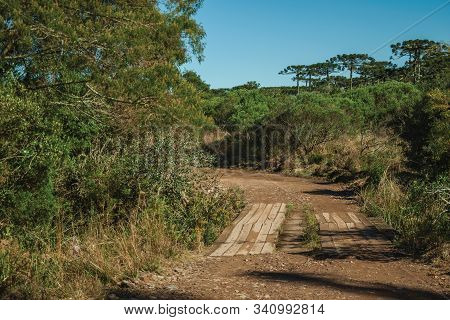 Dirt Pathway Passing Through Forest With A Wood Walkway In The Aparados Da Serra National Park, Near