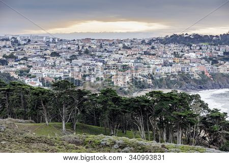 Sea Cliff Neighborhood With Baker Beach And Monterey Cypress Trees In Winter Sunset. Shot From The P