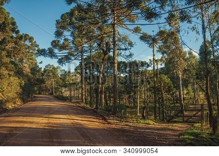 Dirt Road Passing Aside Another Pathway With Wooden Farm Gate And Several Trees At Sunset Near Camba