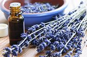 Dried lavender herb and essential aromatherapy oil poster
