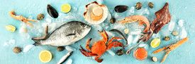 Fish And Seafood Panorama, A Flatlay Overhead Shot On A Blue Background. Fresh Fish, Shrimps And Pra