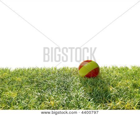 Ball And Grass.