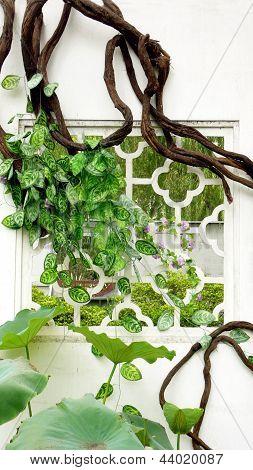 Park green vines