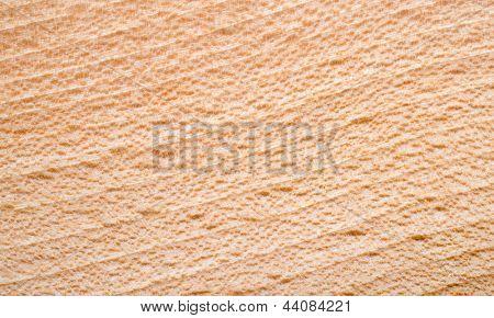 Beechen texture closeup background.