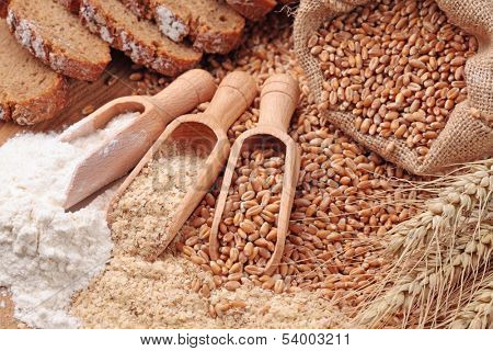 Wood spoons with whole wheat grains, wheat bran and wheat flour