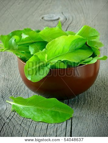 Sorrel In Brown Ceramic Bowl
