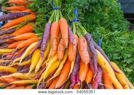 Bunches Organic Rainbow Carrots