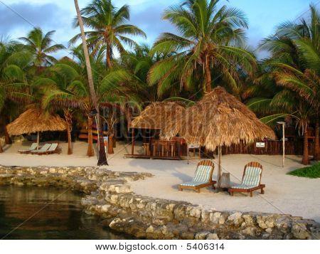 Tropical Resort In Morning Light