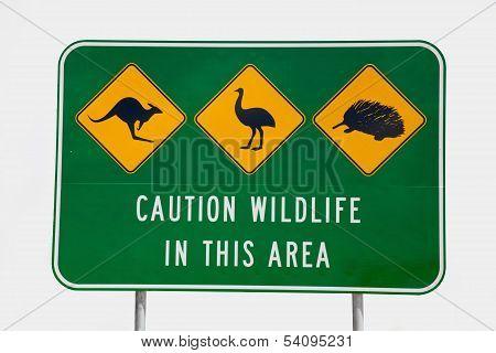 Australian Wildlife Sign