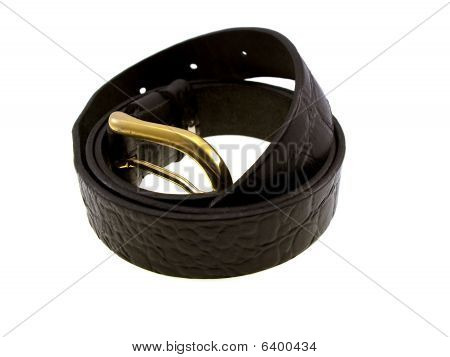 Belt From A Skin With A Golden Buckle