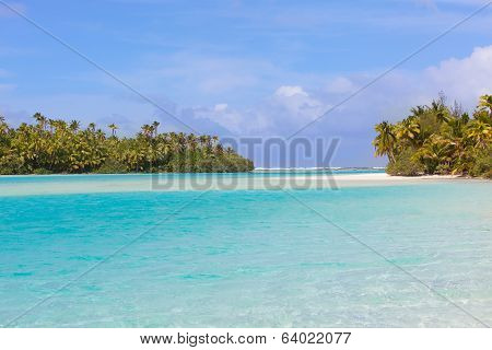 Picture Perfect Beach