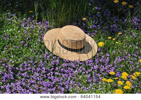 Amish Straw Hat At Spring Time