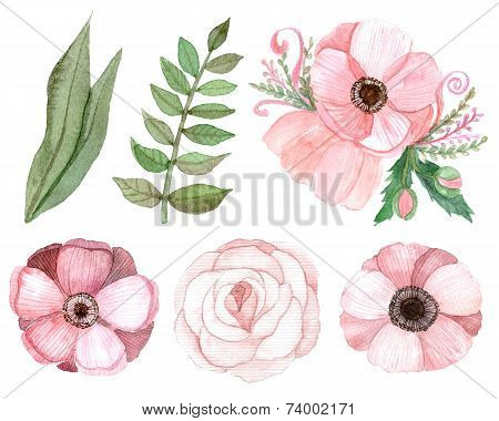 Set Of Pink Flowers And Leaves