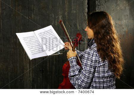 Beautiful Violinist Musician