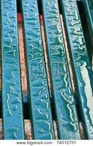 bench after a rain
