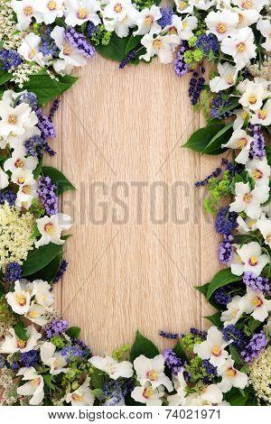 Lavender, elderflower, ceanothus, ladys mantle and philadelphus mock orange flower border over light oak background.