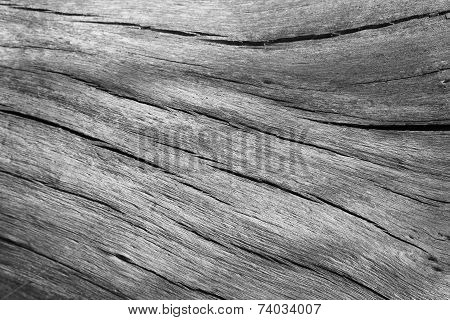 Hardwood Grunge - Wood Background - Grain of Age
