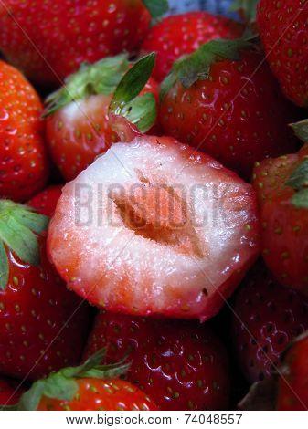 Delicious Srawberry