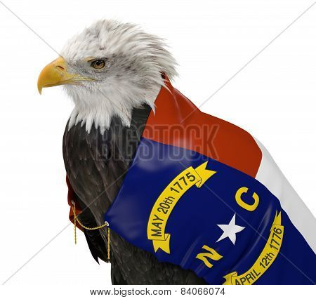 American bald eagle wearing the North Carolina state flag