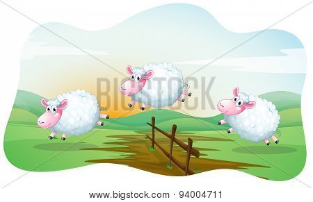 Three sheep jumping over the fence