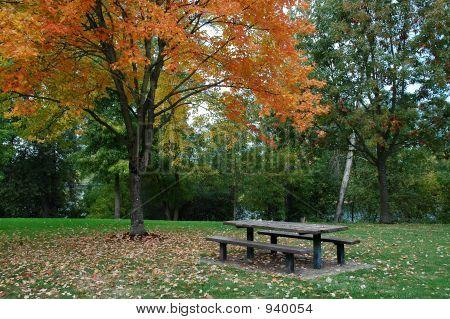 Herbst-Szene