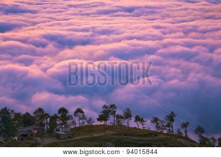 Life Above The Clouds