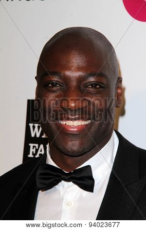 LOS ANGELES - MAR 3:  Adewale Akinnuoye-Agbaje at the Elton John AIDS Foundation's Oscar Viewing Party at the West Hollywood Park on March 3, 2014 in West Hollywood, CA