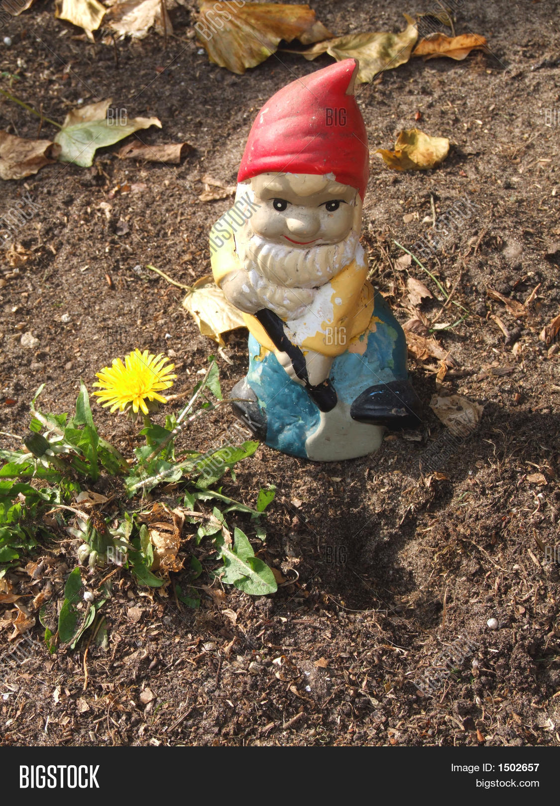 Happy Gnome Garden 3 Image & Photo (Free Trial) | Bigstock