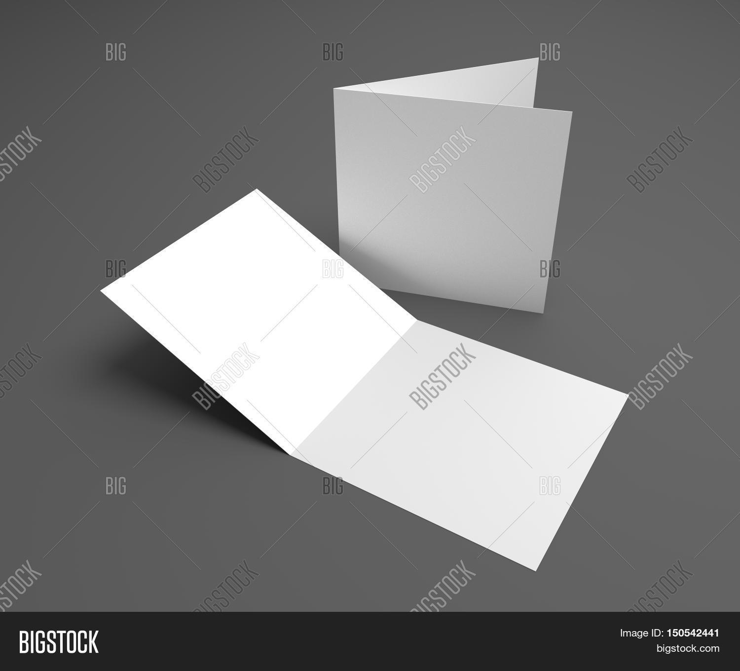 Blank Square Two Leaf Image Photo Free Trial Bigstock