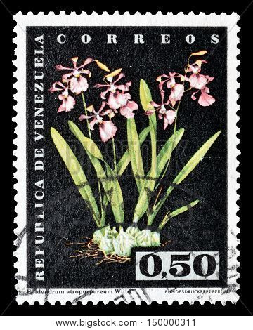 VENEZUELA - CIRCA 1962 : Cancelled postage stamp printed by Venezuela, that shows Flowers.