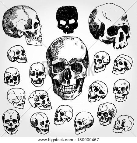 Skulls Hand Drawn