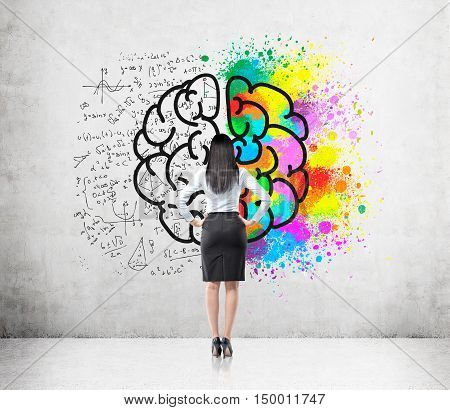 Rear view of woman with black hair looking at brain sketch with one hemisphere colored brightly and the second covered with formulas. Concept of creativity in science