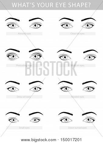 Various types of woman eyes, vector set template