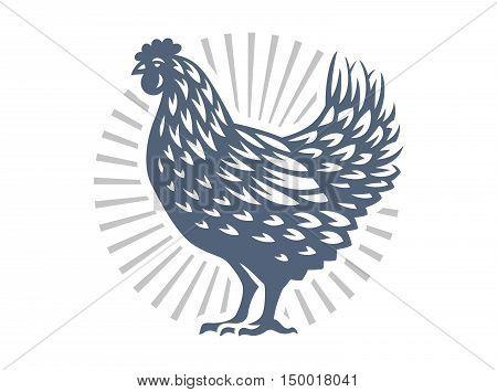 Beautiful chicken illustration emblem on white background