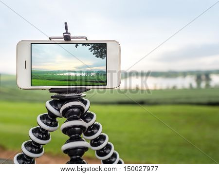Close-up image of smartphone take a landscape photo on flexible tripod at tea farm in northern of Thailand