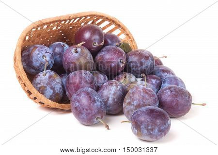 plum in a wicker basket isolated on white background.