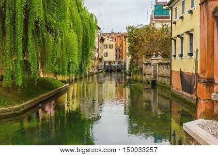 The northern Italian town of Treviso in the province of Veneto, it is located close to Treviso, Padua and, Vicenza