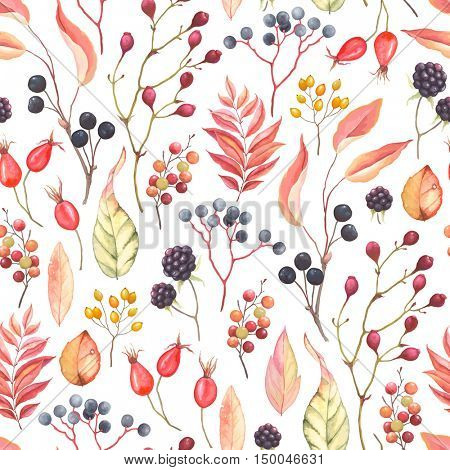 Abstraction seamless pattern with blackberry, rose hips, leaves and branches plants. Vector illustration in vintage style on white background.