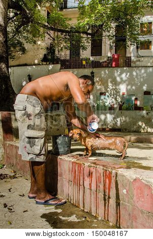 HAVANA - CUBA JUNE 19, 2016: Man washes his dog at a local park in the La Habana Vieja neighborhood on a hot, sunny day.