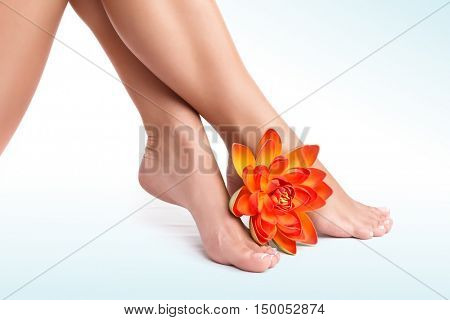 Beautiful women's legs with fresh orange lotus flower isolated on white background, perfect waxing, no more pain concept
