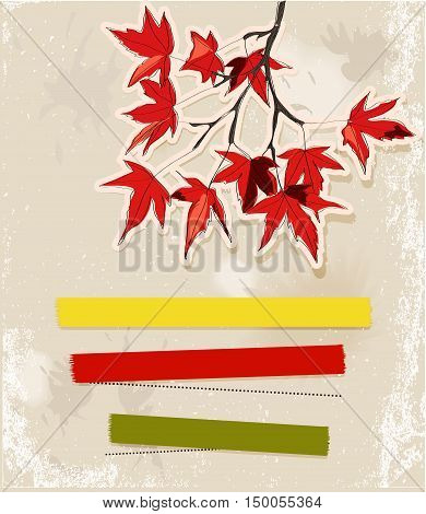 Card with autumn leaves. Vector illustration EPS10