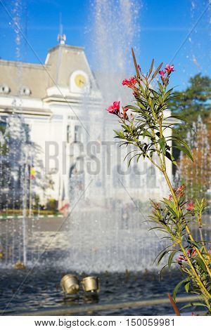Flowers and fountain in front of Pitesti town hall Arges county Romania