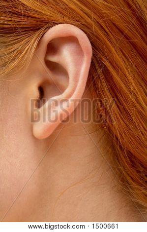 Ear Of Redhead Lady