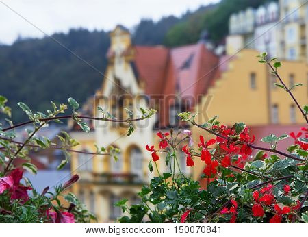 Landscape with flowers after rain and old buildings in background