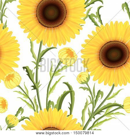 Floral seamless pattern. Yellow sunflower background. Floral seamless texture with flowers.
