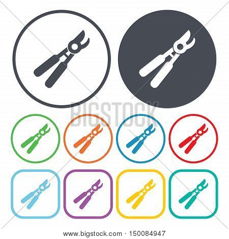 garden shears icon on white background for web