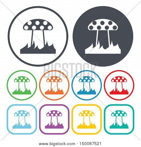 fungus icon on white background for web
