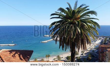 Beautiful View of the Old Town of Menton and a Palm Tree France